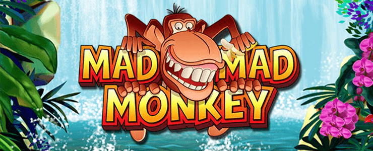 Mad Mad Monkey Slot 000 Header Logo