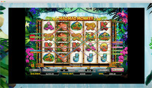 Mad Mad Monkey Slot Paylines