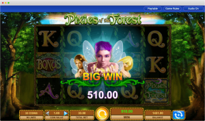Pixies of the forest slot big win
